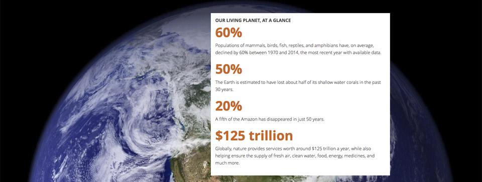 Dieser Report ist ein letzter Warnschuss. Der WWF Living-Planet-Report
